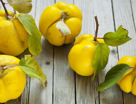 Saisonkalender - September - regional - saisonal kochen und backen - quitten - steckrüne - pastinake