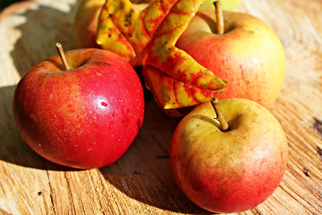 Rezepte - Oktober - Herbst - saisonal und regional kochen - Äpfel
